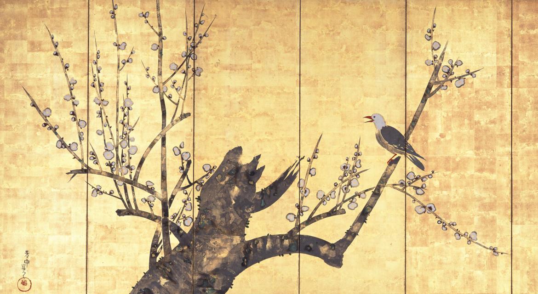 Oiseau sur une branche de prunier